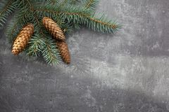 Christmas frame on the background of the Christmas tree, New Year theme. royalty free stock photo