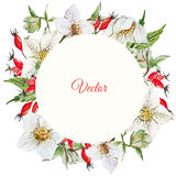 Christmas frame Stock Photography