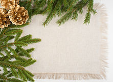 Christmas frame with conifer and pine cones Stock Photography