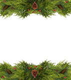 Christmas Frame or Copy Space of Pine Cones and Branches. Christmas Frame of holly berries, pine cones, and evergreen branches Stock Photo