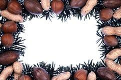 Christmas frame - decoration Stock Photography