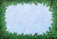 Christmas frame of fir over natural snow. Royalty Free Stock Image