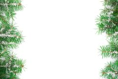 Christmas Frame of Fir tree branch with snow isolated on white background with copy space for your text. Top view.  Stock Photography