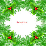 Christmas frame with fir tree Royalty Free Stock Images