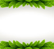 Christmas frame with fir tree. Royalty Free Stock Photo
