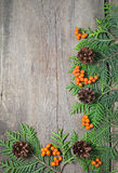 Christmas frame with fir tree, rowanberry and pinecones Stock Image