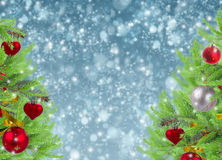 Christmas  frame with fir tree and snow Stock Photo