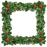 Christmas Frame of Green Holly Leaves  and Berries Isolated Stock Image