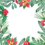 Christmas frame with green pain branches and red berries, mistletoe, holly, poinsettia vector illustration