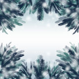 Christmas frame. Made of fir branches and snow Stock Photography
