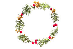 Christmas frame made of green thuja twigs and red wild rose fruits on white background. Top view, flat lay. Copy space Stock Photo