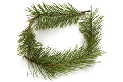 Christmas frame made of pine branches Stock Photos