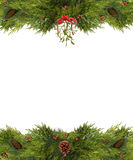 Christmas Frame of Mistletoe and Pine Cones. Christmas Frame of mistletoe, holly berries, pine cones, and evergreen branches isolated on white Royalty Free Stock Image