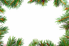Christmas Frame with Natural Fir Tree Branch Royalty Free Stock Photos