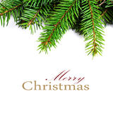 Christmas Frame with Natural Fir Tree Branch  isolated on white Stock Photos