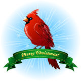 Christmas Frame with northern cardinal Stock Images