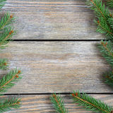 Christmas frame with pine branch on wooden boards Royalty Free Stock Photos