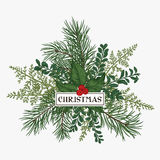 Christmas frame with pine, holly and ferns. Christmas bouquet with space for text. Pine, fern, boxwood, holly. Botanical illustration Royalty Free Stock Photo