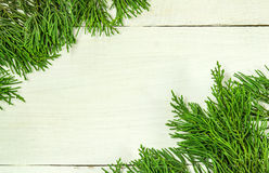 Christmas frame of pine tree branches. Stock Photos