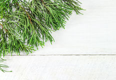 Christmas frame of pine tree branches. Royalty Free Stock Photography