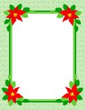 Christmas frame poinsettia stock photos