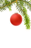Christmas frame with red bauble. Christmas festive border with red bauble and pine tree branch. Isolated on white background Stock Image