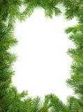 Christmas framework. Christmas green framework isolated on white background stock image