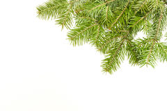 Christmas framework. Christmas green framework isolated on white background Stock Photography