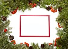 Christmas framework with evergreen fir tree, cones,holly berry a Stock Photo