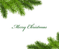 Christmas framework with fir tree Stock Images