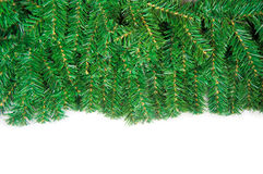 Christmas framework with green pine needles Stock Photography