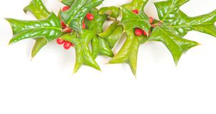 Christmas framework with holly berry Royalty Free Stock Images