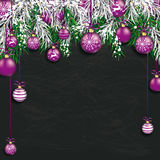 Christmas  Frozen Green Fir Twigs Blackboard. Christmas card with with snow, purple baubles and fir twigs Stock Photo