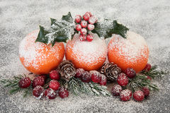 Christmas Fruit Display Royalty Free Stock Images