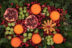 Christmas Fruit and Flora Stock Photo