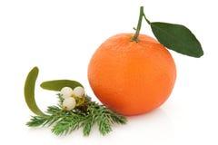 Christmas Fruit stock photo