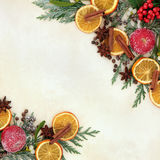 Christmas Fruit and Spice Border Stock Photography