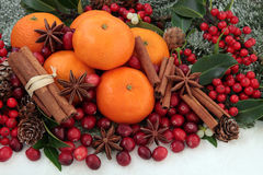 Christmas Fruit and Spice. Cranberry and mandarin orange christmas fruit with cinnamon and star anise spice, holly, mistletoe, ivy and snow covered fir Stock Image