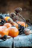 Christmas Fruits, holiday warm decor Royalty Free Stock Images