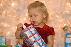 Christmas Fun Stock Photos