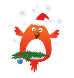 Christmas funny bird Stock Image