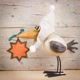 Christmas funny bird. Funny bird in warm hat with christmas star Stock Photography