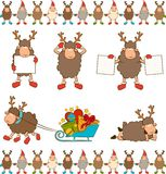 Christmas funny deer. Stock Photography
