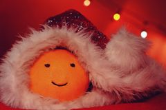Christmas funny orange with cap Royalty Free Stock Photo