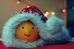 Christmas funny orange with cap Stock Photo