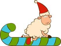 Christmas funny sheep. Stock Photos