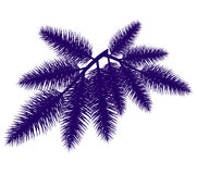 Christmas fur-tree branch vector  illustration. Stock Image