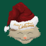 Christmas Furry Cat with Santa's Hat, Vector Illustration Stock Photography
