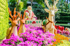 Christmas garden Royalty Free Stock Image
