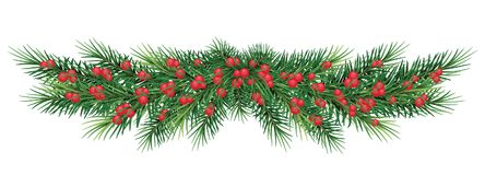 Long garland of Christmas tree branches and red berries.. Reali Stock Image